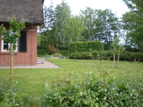 Garden shots in Emden