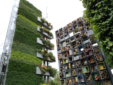 Chelsea flower show - wall of green